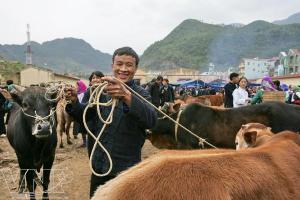 Marche de Meo Vac