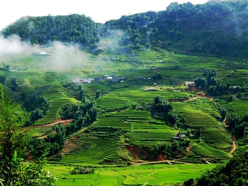 La vallée de Mai Chau