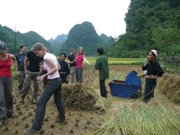 Participation aux travaux des paysans en cour de la marche