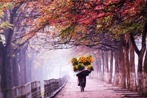 Hanoi en automne