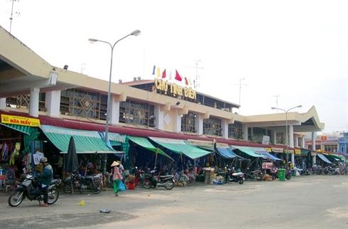 marche d'insecte au Vietnam_1