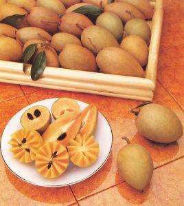 La sapotille de Xuan Dinh