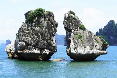 l'ile-de-Trong-Mai