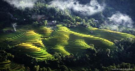 Les-rizieres-en-terrasses-de-Hoang-Su-Phi