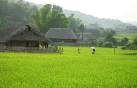 village-tha1