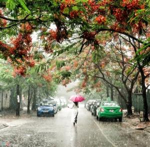 histoire-de-la-pluie