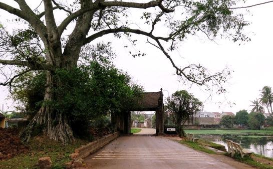 duong-lam-entrée
