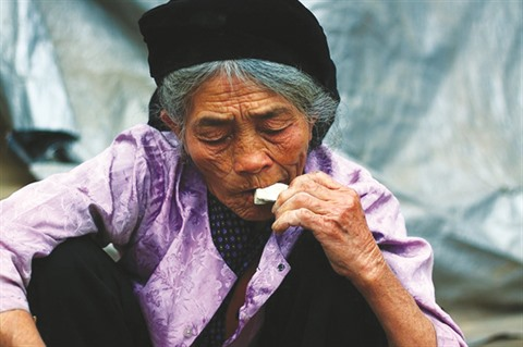 manger terre vinh phuc 2