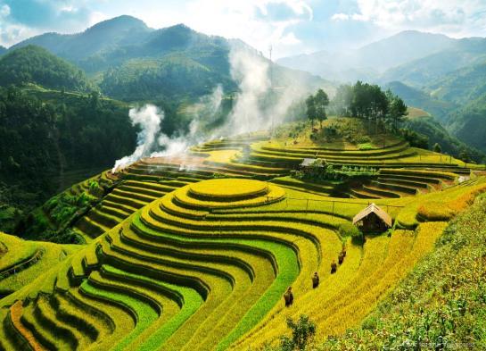 rizieres en terrasse a mu cang chai