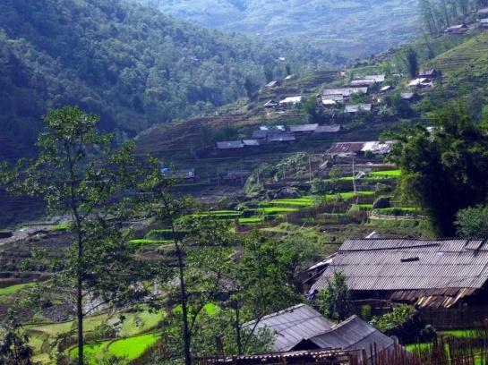village sin chai