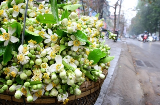 visiter hanoi a voir en mars.jpg