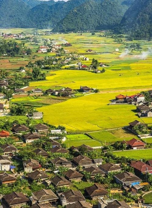 visiter nord vietnam rizieres de bac son village ethnique.jpg