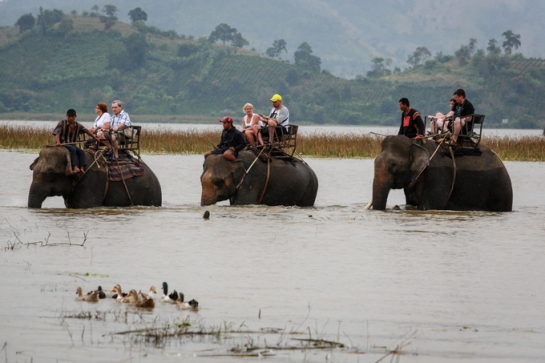 visite lac de lak au plateau du centre balade dos elephant.jpg