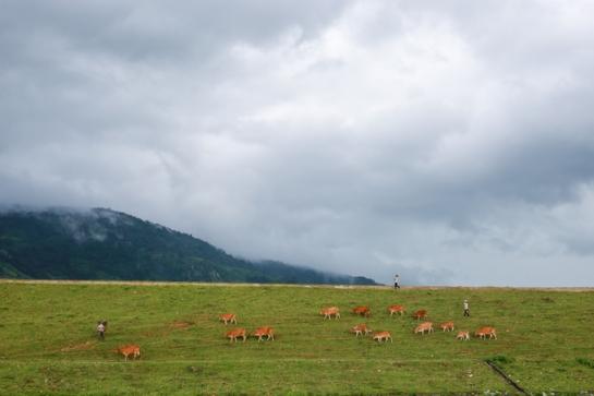 visite lac de lak paysage.jpg