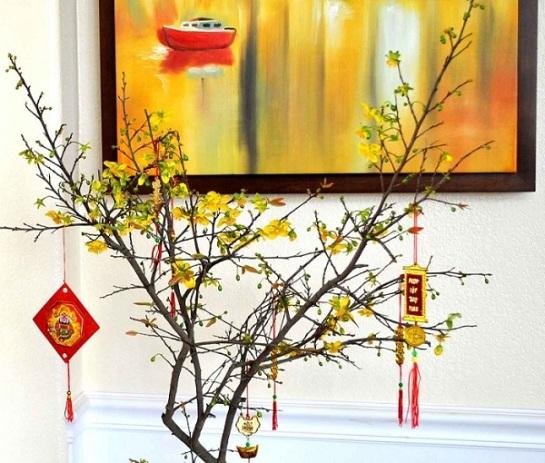 fleurs traditionnelle de la fete du tet abricotier.jpg