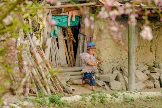 visiter ha giang au printemps enfant.jpeg